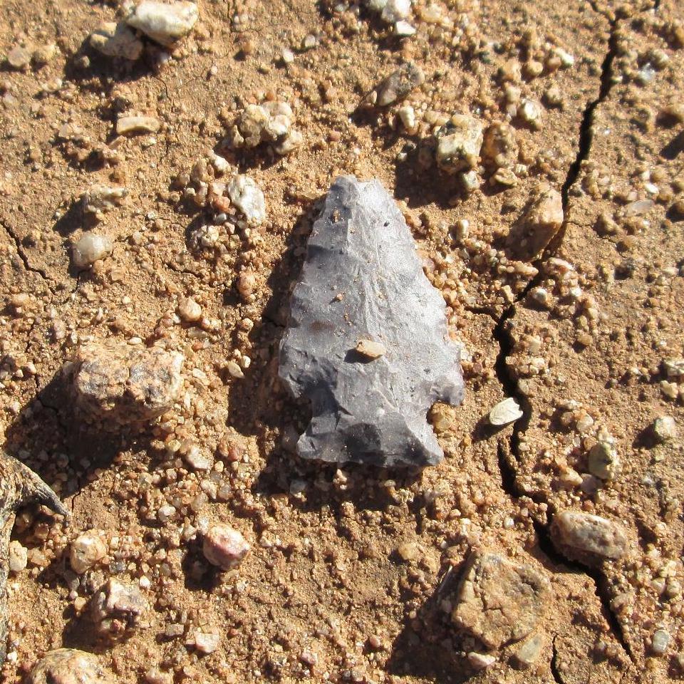 Hohokam Arrowhead Sahuarita Arizona