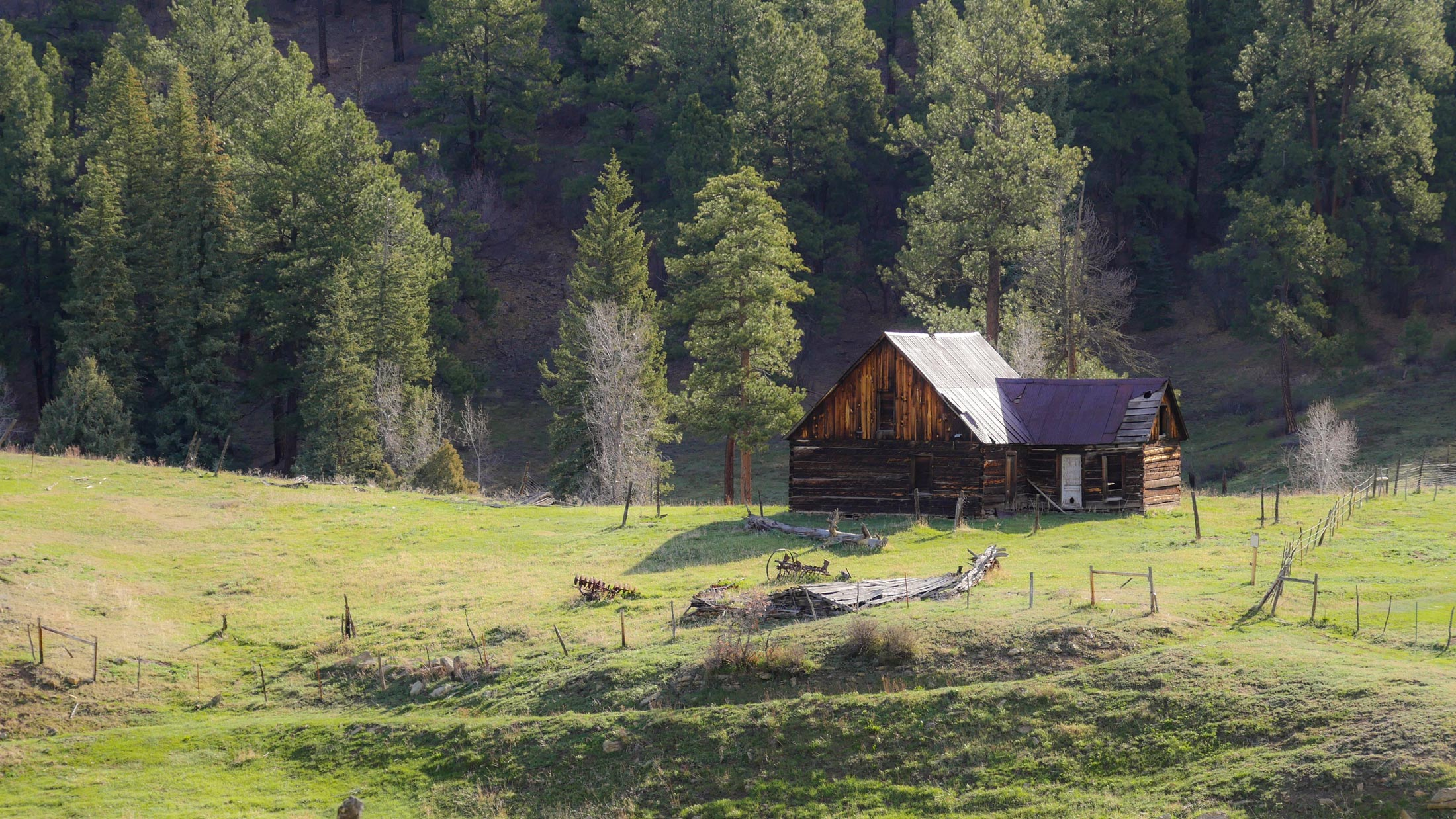 homestead near pagosa springs colorado